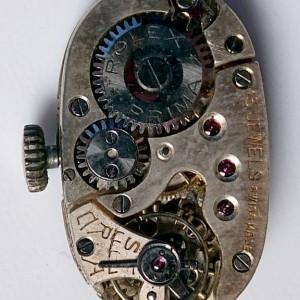 L644 - Rolex Prima . 18ct White Gold . 1924 (18)